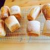 自宅パン教室、はじめました。
