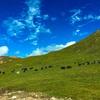 青海省へ突入!真っ青な空-祁連山の絶景。中国西北一網打尽旅行(10)
