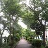 川崎周辺はあまり雨が降っていない梅雨の日々・・