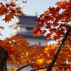 福島県にある赤瓦の名城、鶴ヶ城(会津若松城)の紅葉写真2020 まとめ