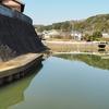 蓮池(三重県松阪)