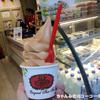 大人味のCha Tra Mue 【チャトラムー】のソフトクリーム!ドンムアン空港に行ったら食べてみて