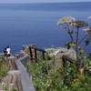 北海道の無料温泉めぐり 貧乏特典旅行 day2-3 ここは桃源郷!? 滝に温泉が流れ出るカムイワッカ湯の滝で、温泉を楽しんでみた。