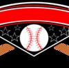プロ野球・オールスターゲームの試合数について ~1試合か複数試合か~