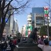 渋谷 原宿を逆ナンやスカウトを期待し散歩したけど……。