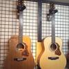 モーリスの希少モデルMW-92・M-82 純国産アコースティックギター入荷しました!