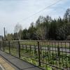 MDジェットに乗る旅 Part13 富良野駅