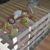 インコのおもちゃ