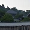 東大寺/梅雨晴れの朝 大仏殿裏手の木々を渡ってくる風は瑞々しい。行基も重源もこの空気を味わったに違いない。