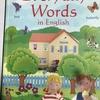 【英単語絵辞典】「Everyday Words in English」Usborne 社の教材。絵辞典なのに、ここまで凝る?誰が企画して、何人くらいのチームで作ったのか興味が湧きます。