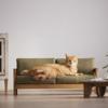 家の家具を台無しにした猫に対処する完全な解決策