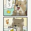 チベットスナギツネの砂岡さん「お風呂カード」