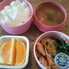 トンカツor焼き魚(鮭)
