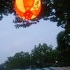 箕面祭りに行ってきました。かき氷の新しい味に挑戦したり、箕面の柚子を沢山使ったチキン南蛮を食べて祭りを楽しんできました!