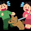 犬に追いかけられて骨折した僕が思う犬の飼い主に伝えたいこと。