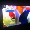 40代のダイエット  ブログ  143日目 ┌|≧∇≦|┘ 【寝不足?】【お昼は黒酢ダイエット】 【バタアブ&家の中でサッカーの練習】
