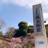 梅の本数は多いけど、人の数は少ない「池上梅園」の梅が見頃!!!
