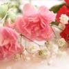 母の日のプレゼントの花でクレーム?
