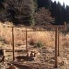 竹の屋根の掘っ建て小屋と五右衛門風呂を作る(後編)