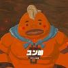 【ゼルダの伝説BoW プレイ日誌49】ユン坊を探して 〜組長命令〜