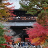 紅葉見頃な南禅寺