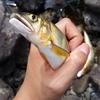 【天然鮎、ゲットだぜ!】道の駅にて1匹1000円で売られている天然鮎を、200円で手に入れるための2つの「ション」