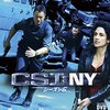 CSI:NY S6 #22 「覗き見」 Point of View