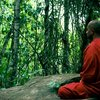 【仏教が生まれた歴史ポイント5つ!】仏教、ヒンドゥー教まとめ 第2弾