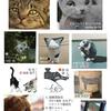 京都、猫日和