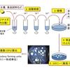 バクテリアの計数と一般細菌