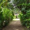 パプアニューギニアの自宅、公開します!!
