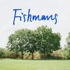 映画:フィッシュマンズを観た