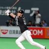 【バッテ】福岡ソフトバンクホークス2020年、全野手使用バッティンググラブ