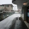 雪が降っていますが、あおぞら接骨院は診療しております。