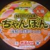 TV ヌードル ちゃんぽん 95−5円 (イオン)