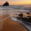 写真に縦書きテキストを美しく挿入できるアプリ『写真に一句』がいかす!