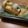 神戸フランツ魔法の壺を使ってイロイロやってみた【多肉植物】