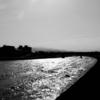 光溢れる犀川河畔へ