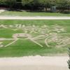 芝生アート