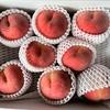 夏のフルーツの王様、桃とメロンがやって来た!