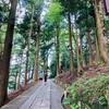 キャンプ3日目✦天川村観光トロッコは絶対マシーンだった【面不動鍾乳洞編】