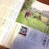 『クロワッサン No939 掃除特集』で、マインドフルネス掃除法の記事のライティングをしました。
