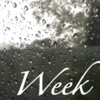 【Week 17】ひと味ちがった表情が見えるこの季節