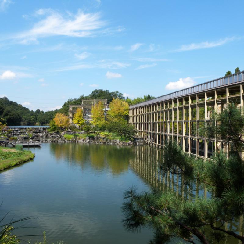 新緑まばゆい季節に五感で楽しむ森林浴!京都の「けいはんな記念公園」へ行こう♪