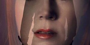 【ノクターナル・アニマルズ】映画の感想:男の闇、女の闇を描いたスタイリッシュなサスペンス