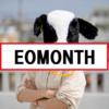 【SQL Server】月末を求められるEOMOTH関数が便利!!!