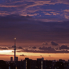 天気と空と:2020-11-16〜11-20
