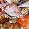 7月の旬の魚介類