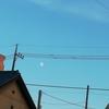 いまだけの夏の雲と月