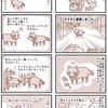 【犬漫画】住宅地でタヌキと遭遇